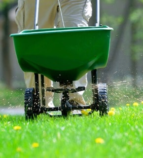 Fertilization and Weed Control Services in Greeley Colorado